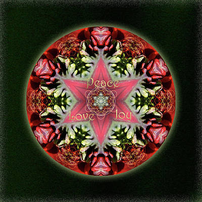 Digital Art - Peace Love Joy Holiday Star by Alicia Kent