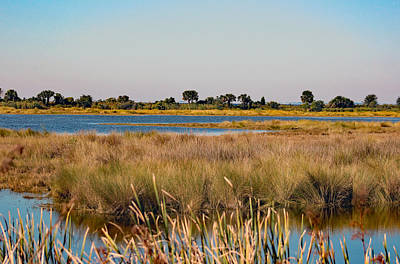 Seas Photograph - Peace On A St Marks Lagoon by Deb Hayes