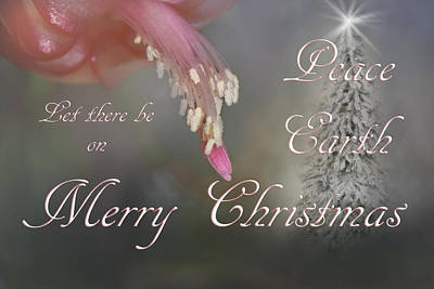 Photograph - Peace On Earth Beveled Text by Judy Hall-Folde