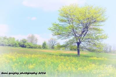 Peace On The Hillside Art Print