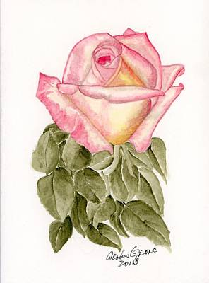 Peace Rosebud Original