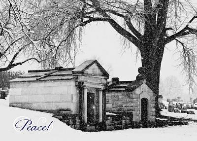 Photograph - Peace Snow Day by Brenda Conrad
