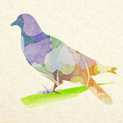 Pigeon Mixed Media - Peace  by Stacey Chiew