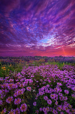 Photograph - Peace That Surpasses All Understanding by Phil Koch