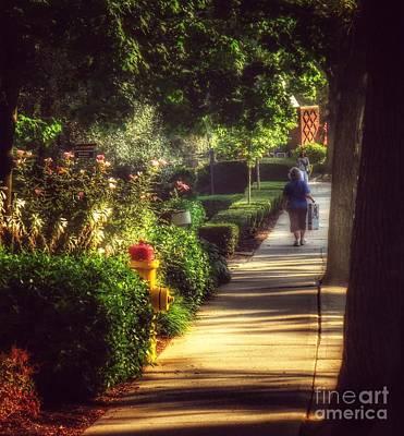 Photograph - Peaceable Road by Miriam Danar