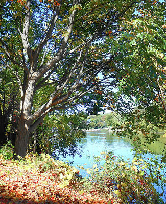 Photograph - Peaceful Autumn Lake  by Irina Sztukowski