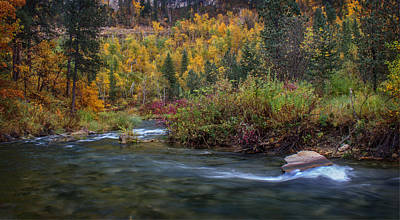 Photograph - Peaceful Autumn Morning Spearfish Creek by Ray Van Gundy