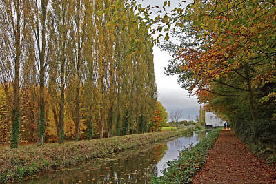 Photograph - Peaceful Autumn Stroll by Gill Billington