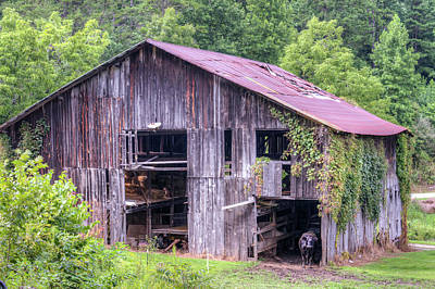 Photograph - Peaceful Barn In Morgan County Kentucky by Douglas Barnett