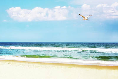 Photograph - Peaceful Beach With Seagull Soaring by Susan Schmitz