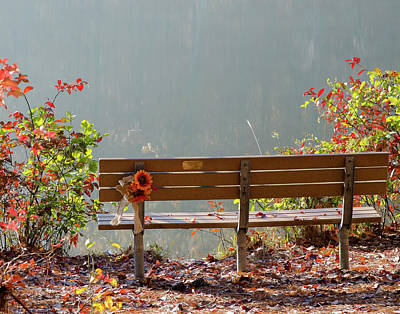 Print featuring the photograph Peaceful Bench by George Randy Bass