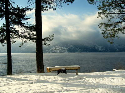 Photograph - Peaceful Bench by Leone Lund