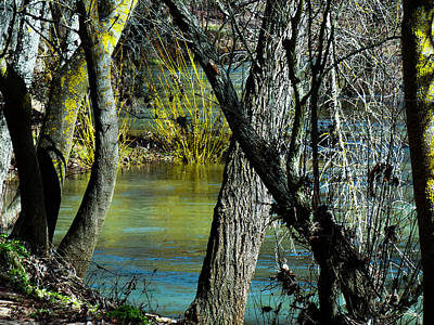 Photograph - Peaceful Blue Green Brook by Alan Socolik