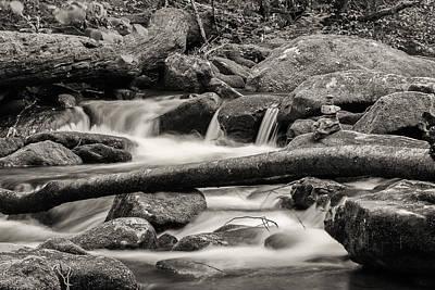 Photograph - Peaceful Bw by Joye Ardyn Durham