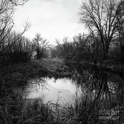 Photograph - Peaceful Creek With Frost by Kari Yearous
