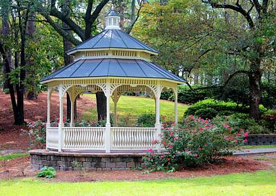 Photograph - Peaceful Day At The Park by Cynthia Guinn