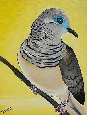 Peaceful Dove  Art Print by Una  Miller