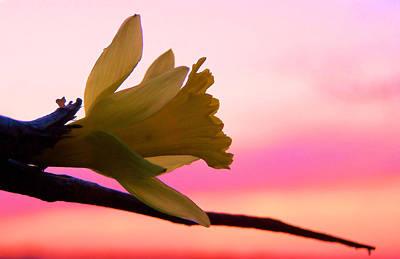 Peaceful Easy Feeling Print by Karen M Scovill
