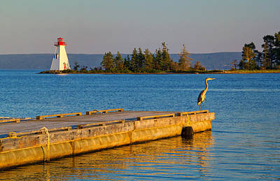 Photograph - Peaceful Evening In Baddeck by Carolyn Derstine