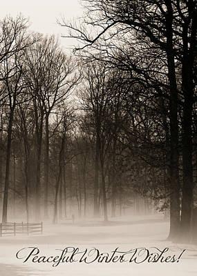 Photograph - Peaceful Hazy Shade Of Winter by Brenda Conrad