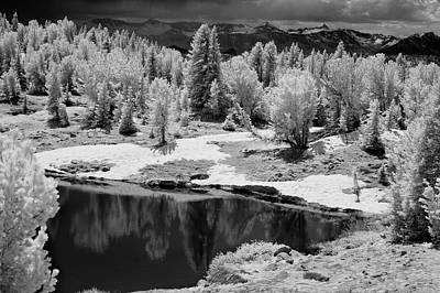 Photograph - Peaceful Ir by Brian N Duram