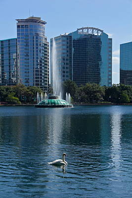 Photograph - Peaceful Lake Eola by Denise Mazzocco