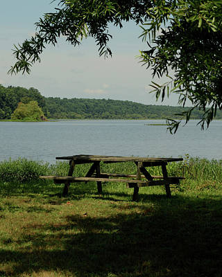Photograph - Peaceful Lake by Karen Harrison