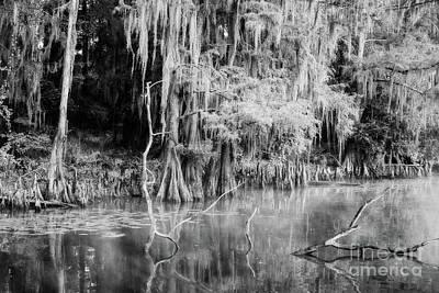Photograph - Peaceful Morning On Big Cypress Bayou Texas - Bw by Scott Pellegrin