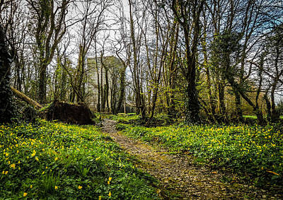 Photograph - Peaceful Path To Yeats Tower by James Truett