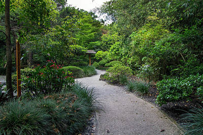 Photograph - Peaceful Pathway by Vanessa Valdes