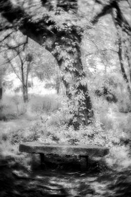 Photograph - Peaceful Rest-bw by Joye Ardyn Durham