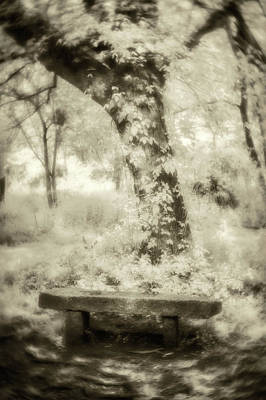 Photograph - Peaceful Rest-sepia by Joye Ardyn Durham