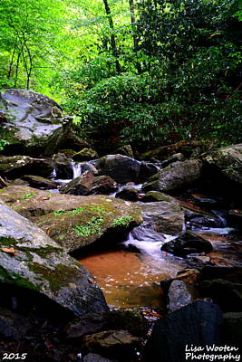 Photograph - Peaceful River by Lisa Wooten