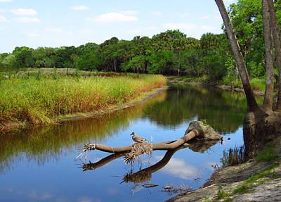 Photograph - Peaceful River by Rosalie Scanlon