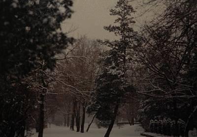 Photograph - Peaceful Snow Dusk by Rob Hans