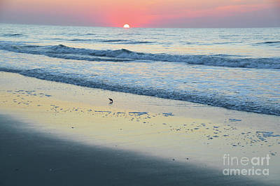 Photograph - Peaceful Sunrise - Sea Isle N.j. by Robyn King