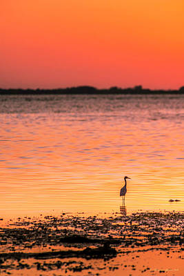 Solitude Photograph - Peaceful Times by Marvin Spates