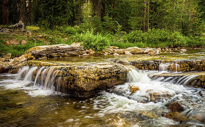 Photograph - Peaceful Waters - Upper Provo River by TL Mair