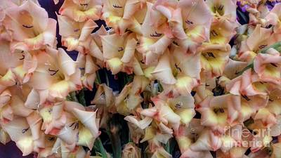 Photograph - Peach And Lemon Gladiolas by Joan-Violet Stretch