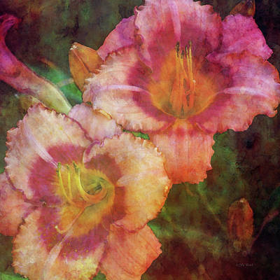 Photograph - Peach And Melon Ruffle 3153 Idp_2 by Steven Ward