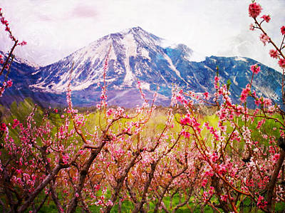 Peach Blossoms And Mount Lamborn II Art Print