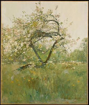 Peach Blossomsvilliers-le-bel Original by Childe Hassam