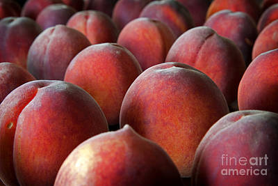 Of Peaches Photograph - Peach Delight by John Stephens