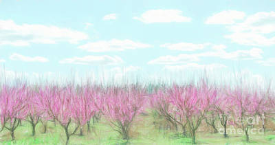 Digital Art - Peach Farm Digital Painting by Andrea Anderegg