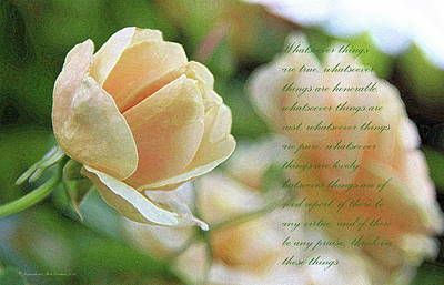 Photograph - Peach Rose by Inspirational Photo Creations Audrey Taylor