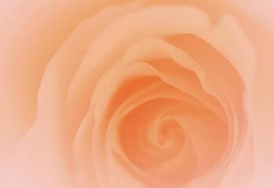 American West - Peach Serenity by The Art Of Marilyn Ridoutt-Greene