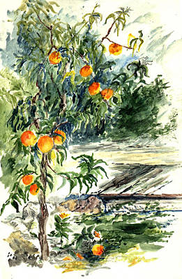 Ojai Wall Art - Painting - Peach Tree by Lily Hymen