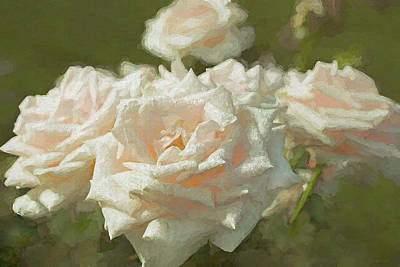 Photograph - Peaches And Cream Roses by Jennie Marie Schell