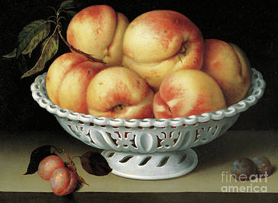 Painting - Peaches In A Pierced White Faience Basket  by Fede Galizia