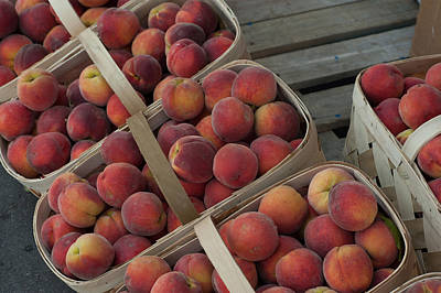 Photograph - Peaches by Joye Ardyn Durham